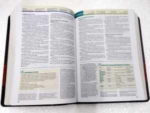 Bíblia-de-estudo-Cronológica-Aplicação-pessoal-interno