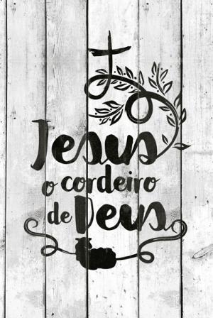 Bíblia Sagrada NVT - Jesus o Cordeiro de Deus | Capa dura