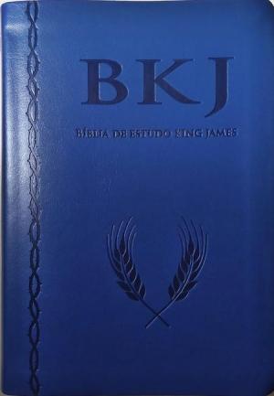 Bíblia de Estudo King James - Azul