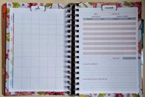 Agenda meu plano perfeito - Dourada